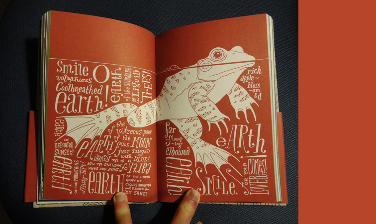 a frog surrounded by hand drawn letters.