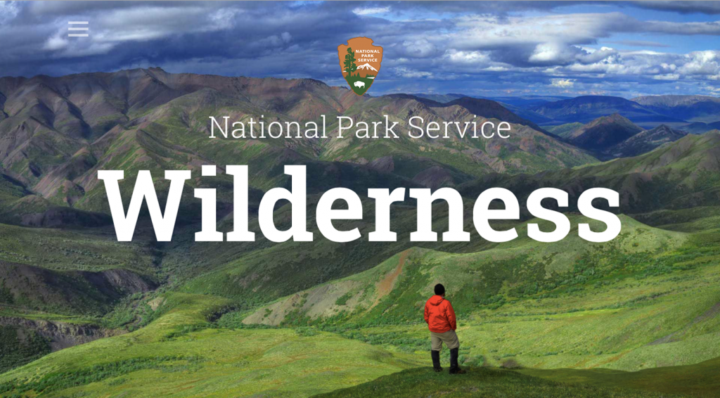 Man taking in the majestic view at Denali Wilderness, opening image on the home page of their website.