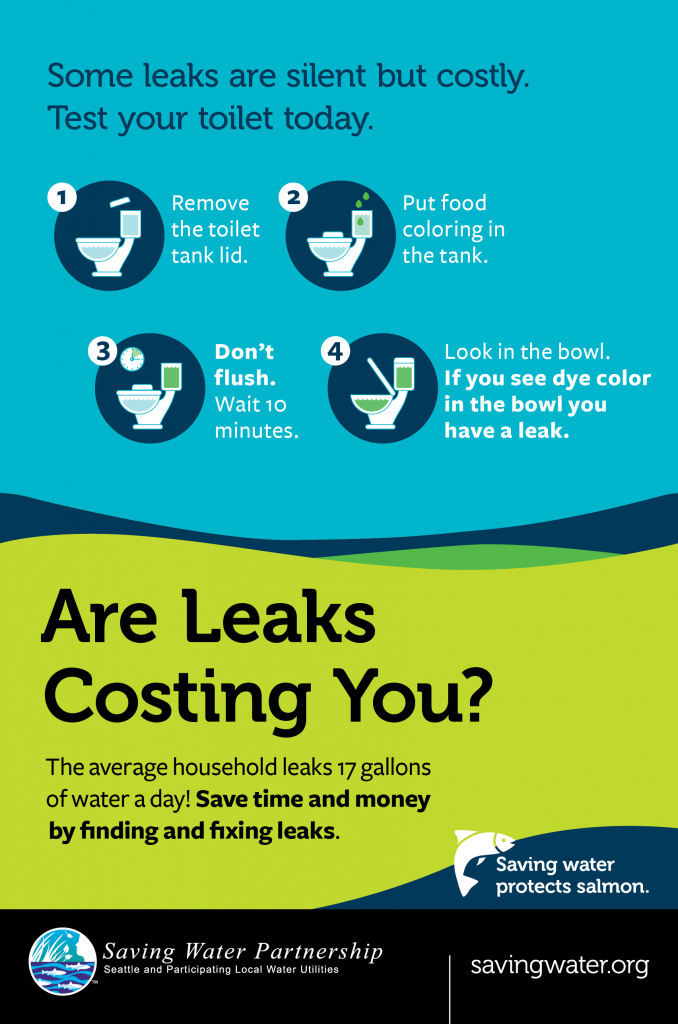 infographic about toilet leaks