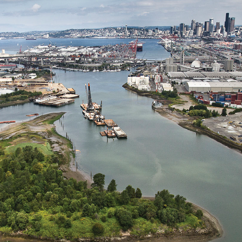 Duwamish Valley Action Plan | brand